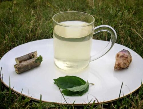 A simple immunity boosting drink to prevent cold, flu, cough!